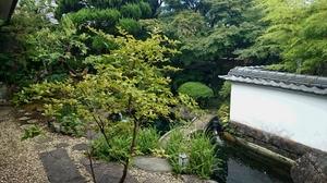 山田屋庭 (640x360).jpg